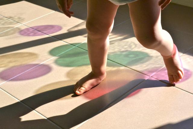 Otis stepping on colour reflections - morning light