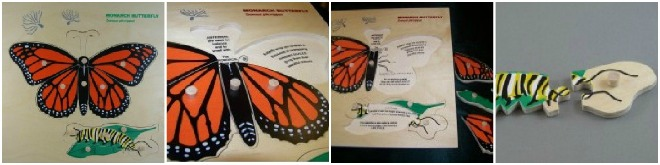 Monarch Butterfly Puzzle from Beginning Montessori