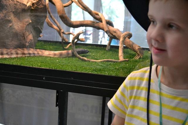 Caspar with snake