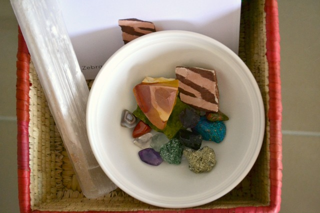 Rocks and minerals with identification cards