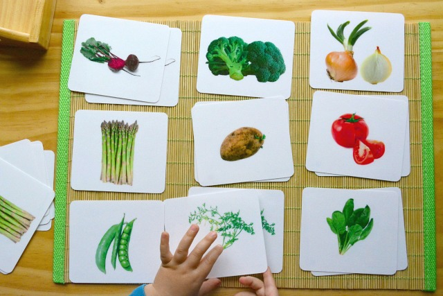 Otis picture to picture matching vegetables nine cards