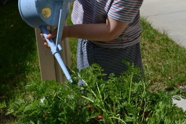 Watering with two hands