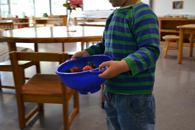 Otis washing strawberries