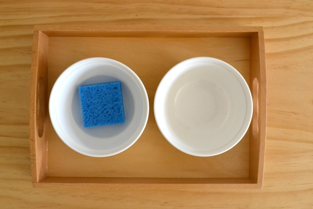 Montessori sponging activity