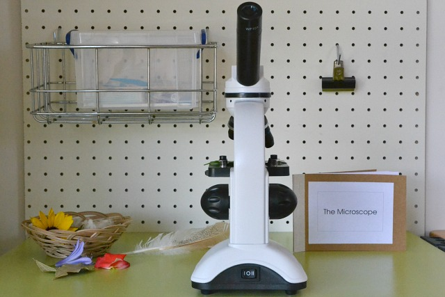 First Microscope