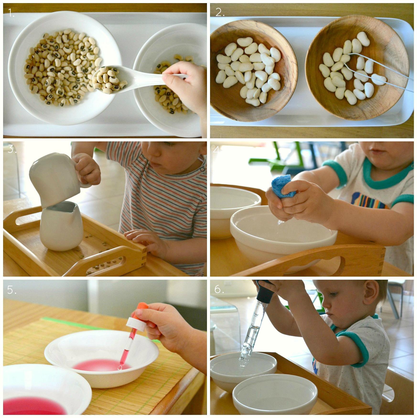 Transferring Activities 18 Months 3 Years How We Montessori