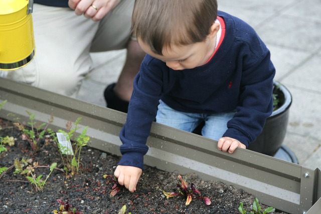 Joshua gardening