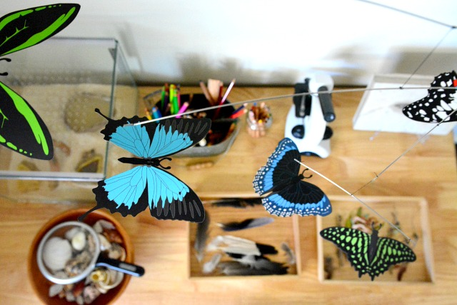 Butterfly mobile #1