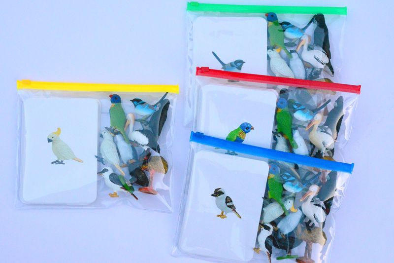 Birds in packets