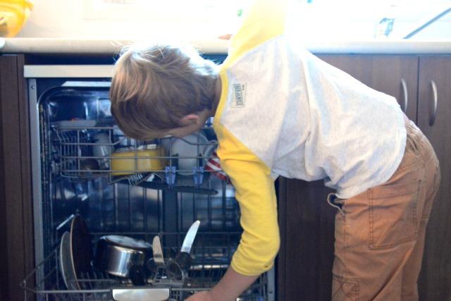Caspar using the dishwasher