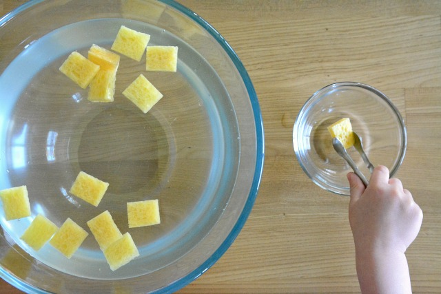 Otis with sponging activity in water