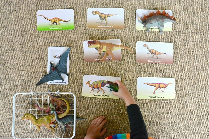 Flash of Brilliance Dinosaur Flashcards at How we Montessori