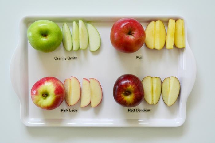 Tasting Apple Varieties at How we Montessori
