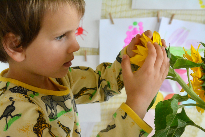 Otis admiring sunflowers at How we Montessori October 2015