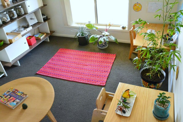 Our Study at How we Montessori