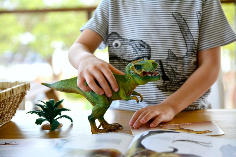 Otis using resources to learn about the TRex at How we Montessori