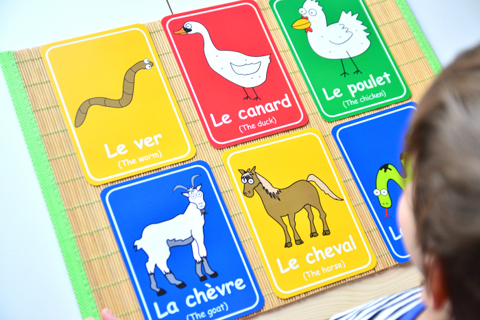 Otis with French flashcards at How we Montessori