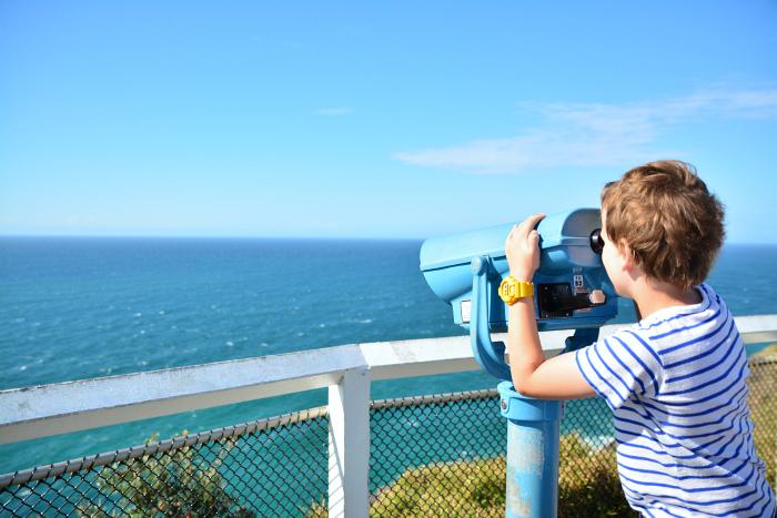 Byron Bay #5 Caspar Whale Watching