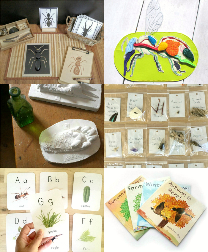 Nature Items from Etsy - How we Montessori