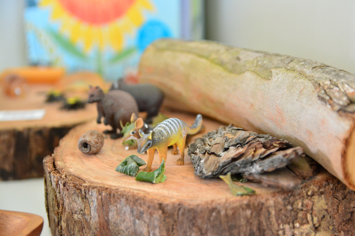Australian Native Animals - Spring Nature Table at How we Montessori