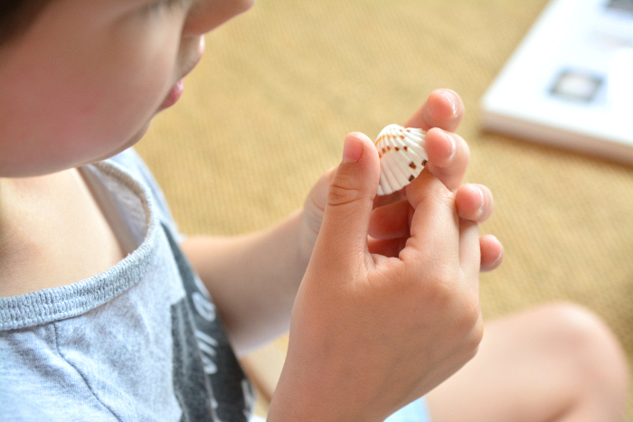 Otis observing shell, touch, sight at How we Montessori