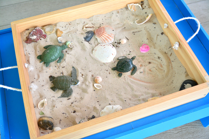 Sand Tray at IMCH at How we Montessori, Turtles and Shells