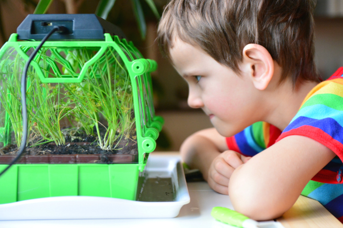 Otis looking closely at the DIY Greenhouse Kit at How we Montessori
