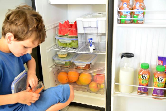 Otis in children's fridge at HWM Health Stars