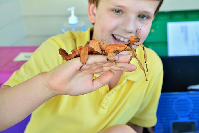 Otis' wildlife party at How we Montessori