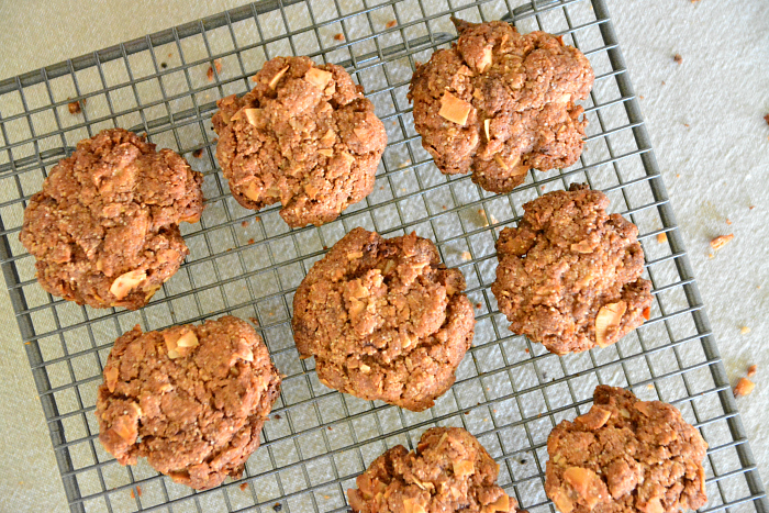 Otis Cacao and Coconut Cookies Baked