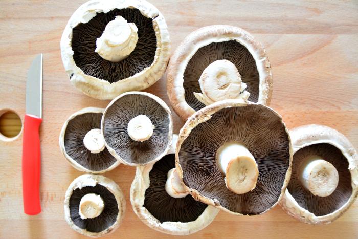 How To Make Mushroom Spore Prints With Supermarket Mushrooms