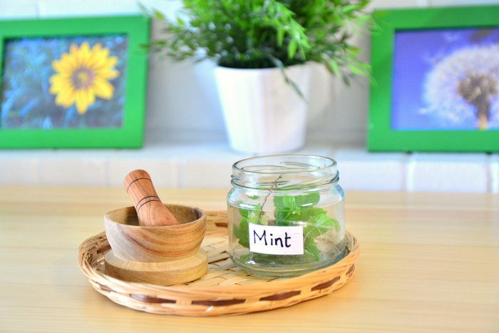 Mint Sensory Tray at How we Montessori