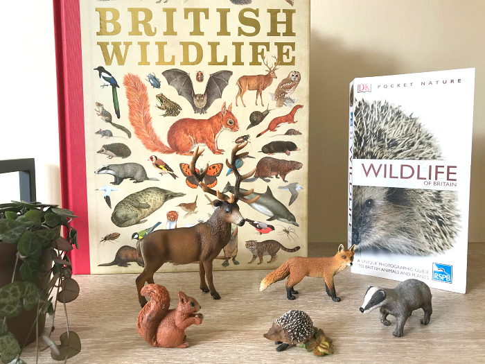 British Wildlife at HWM