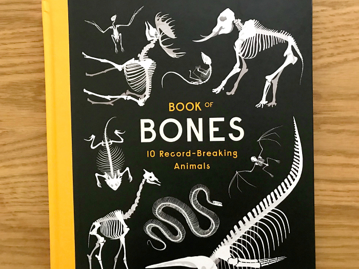 Book of bones at hwm cover