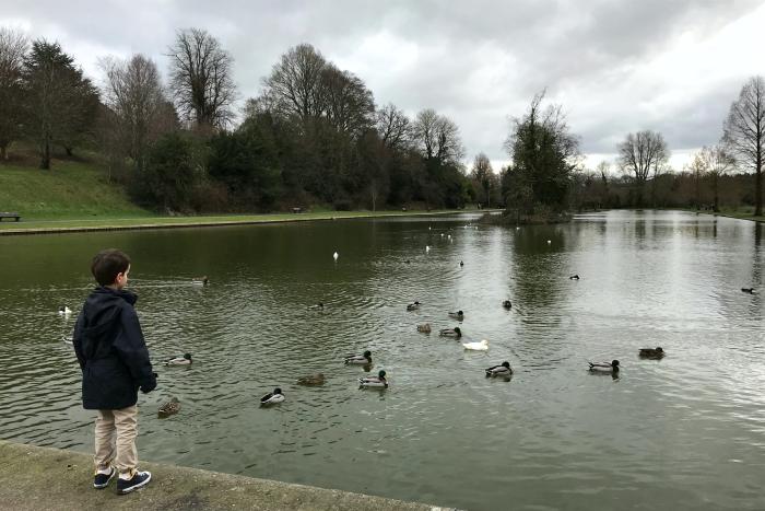 Otis at HWM looking at ducks UK