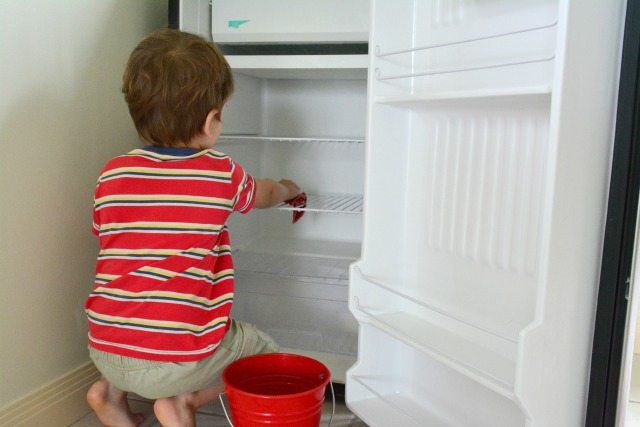 Otis wiping out refrigerator Dec 2014 at three years #2