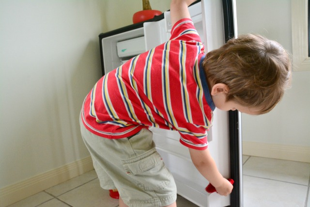 Otis wiping out refrigerator Dec 2014 at three years #3