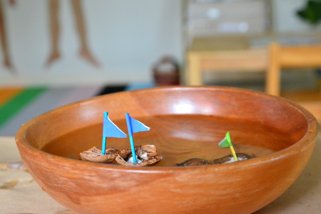 Walnut shell boats #2