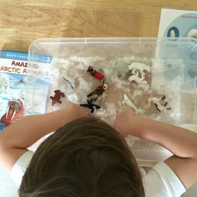 Arctic Sensory Play Snow