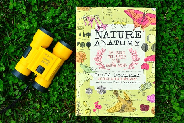 Nature Anatomy by Julia Rothman June 2015 Review