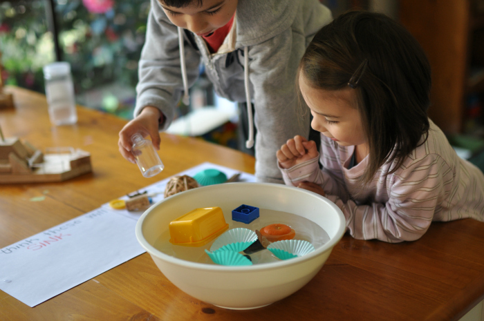 Montessori and Me Sink Float