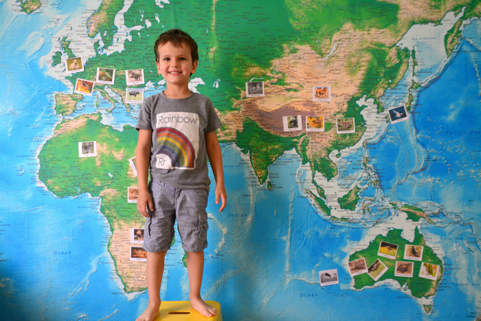 Otis doing Animals of the World Word on Wall World Map at How we Montessori March 2016