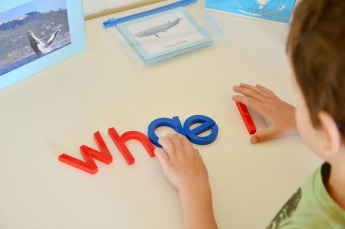 Movable Alphabet whale #2