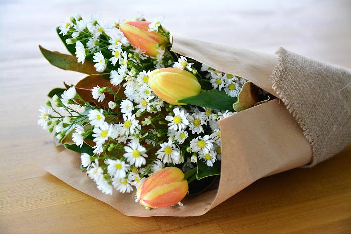 Flowers Poppy Rose