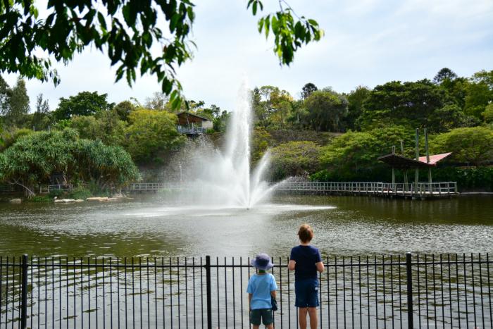 Caspar and Otis at the Roma Street Botanical Gardens - fountain