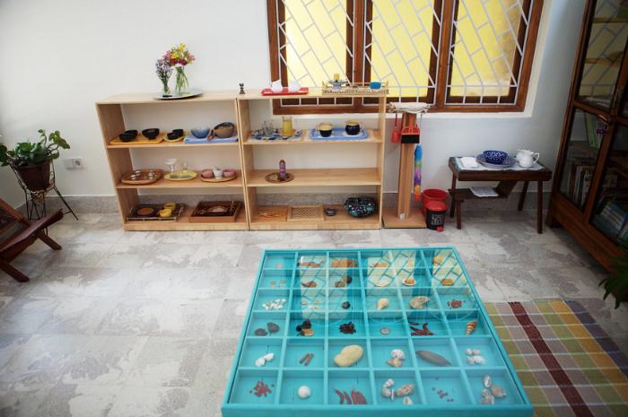 The Earth School, India, Shellls