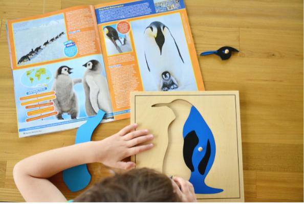 Otis with penguin puzzle