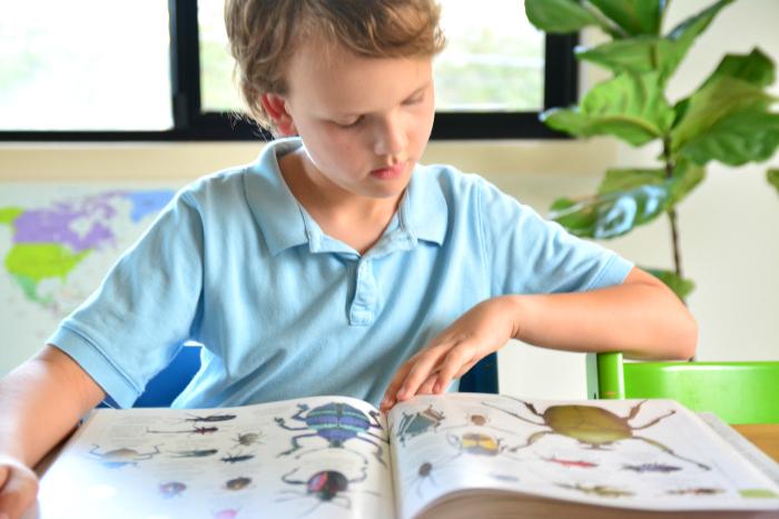 Caspar reading at HWM