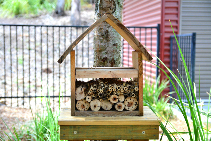 Insect House at IMCH It's the detail that matters - Montessori