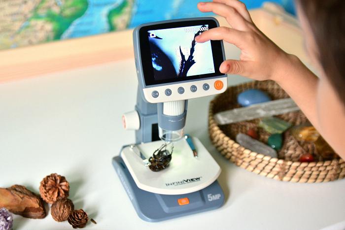 Otis with beetle, digital microsope at How we Montessori